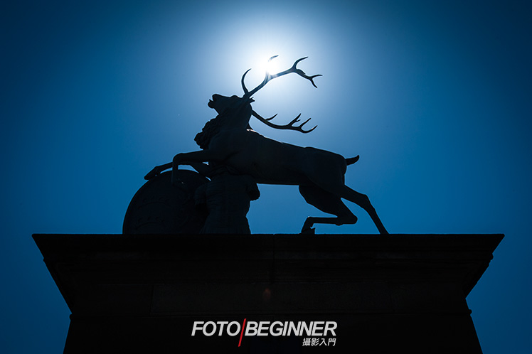 Shoot in high backlight conditions, use matrix metering to capture silhouettes.